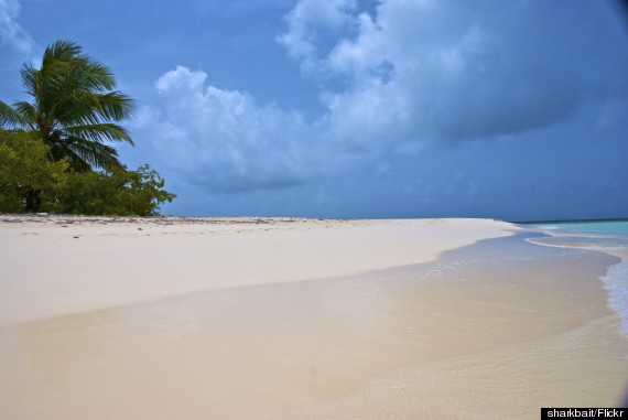 Photo of Barbuda Is The Best Caribbean Island You're Not Going To