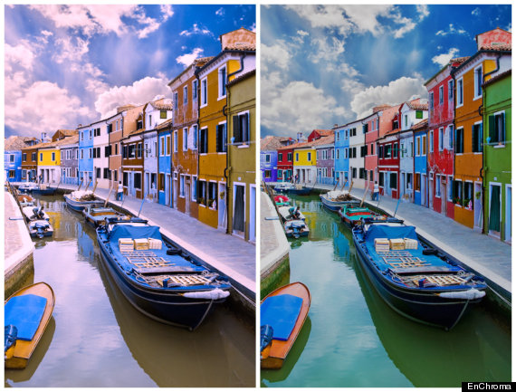 Photo of New Glasses Transform The Way Colorblind People See The World