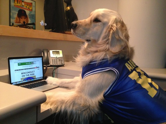 Photo of Exclusive: Air Bud Predicts Who Will Win The Super Bowl In The Dog's First Ever Interview