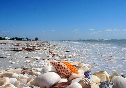 Photo of The Top 10 Places in Florida To Visit