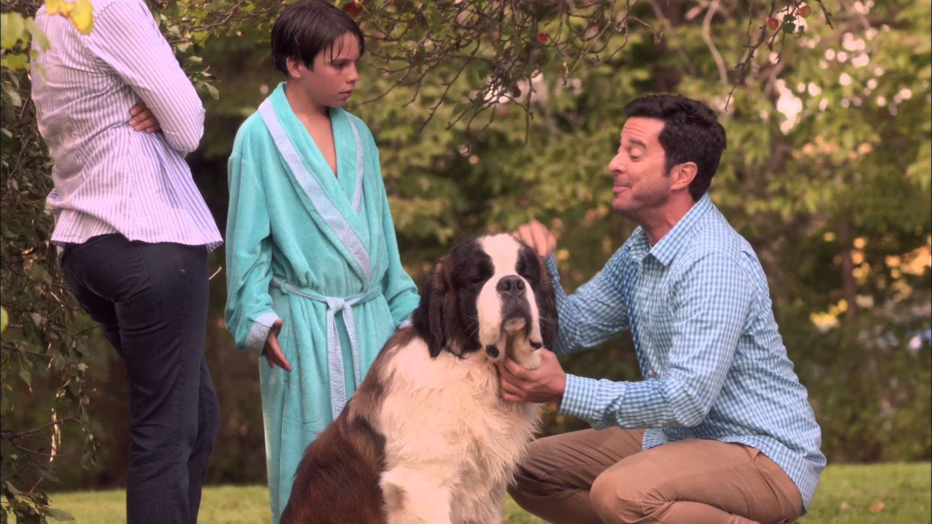 Photo of Beethoven's Treasure Tail (2014)